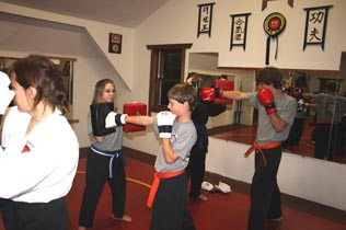 Tae Kwon Do, Karate, Self-defense, ultimate fighting!