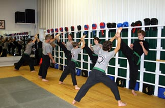 ultimate fighting, self defense, tae kwon do!